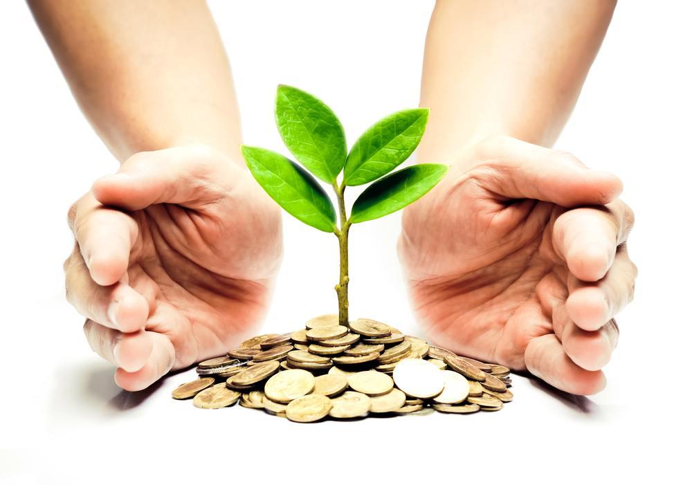 Livret de développement durable (LDD)