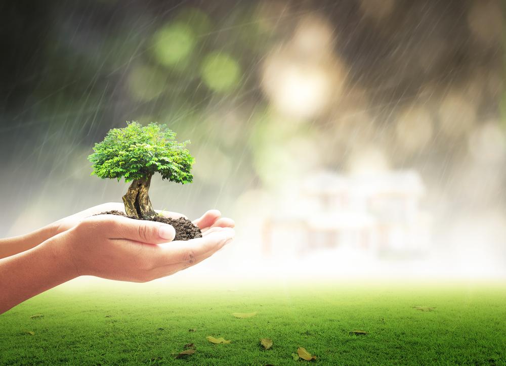 Assurance vie et acceptation du bénéficiaire